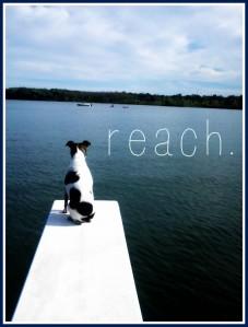 FMF-Reach-600x791