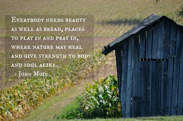 Muir-quote-1-1024x682